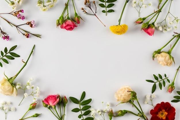Vista superior da coleção de flores