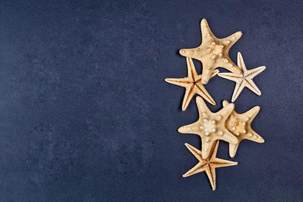 Vista superior da estrela do mar cinco no fundo preto.