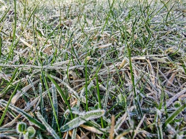 Vista superior da grama coberta com close-up de geada