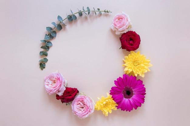 Vista superior da linda composição de flores Foto Premium