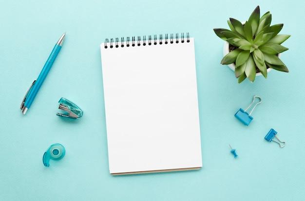 Vista superior da mesa com notebook e suculenta