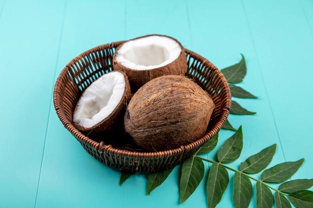 Vista superior da metade e cocos inteiros em um balde com folhas na superfície azul