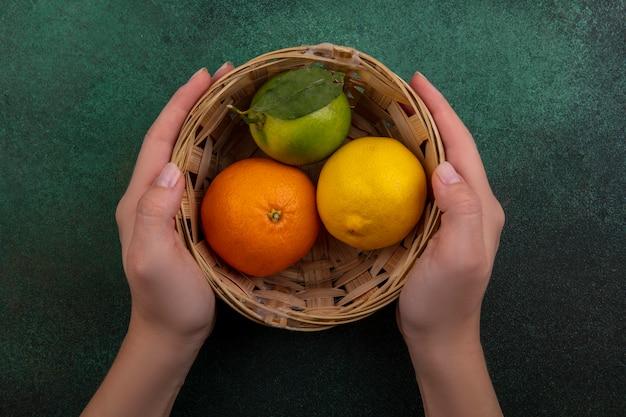Vista superior da mulher segurando uma cesta com laranja, limão e lima sobre fundo verde