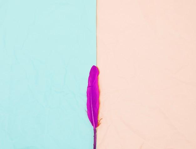 Vista superior da única pena cor-de-rosa contra o fundo de turquesa e bege