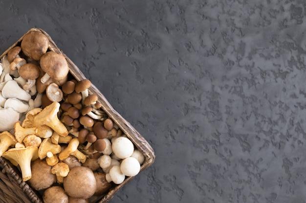 Vista superior da variedade de cogumelos selvagens não cozidos da floresta em uma cesta de vime em um fundo preto, configuração lisa. cogumelos chanterelles, agarics de mel, cogumelos ostra, champignon, portobello, shiitake