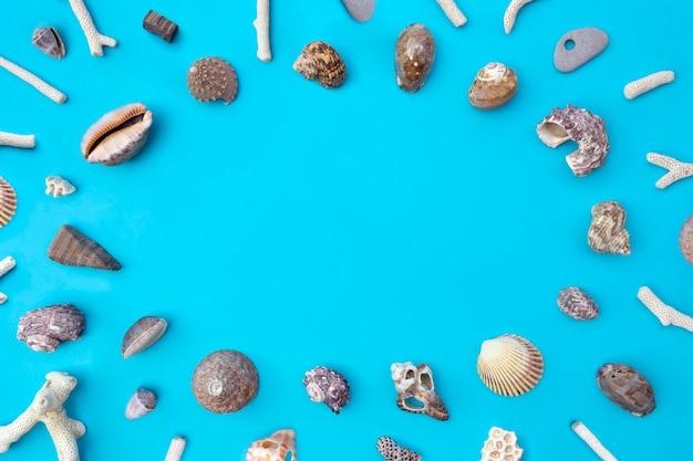 Vista superior das conchas do mar em azul. postura plana