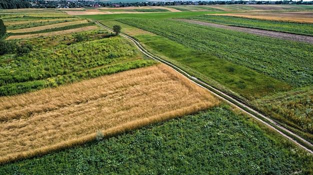 Vista superior das fazendas com jardins e a estrada
