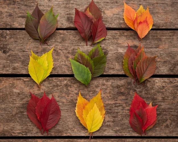 Vista superior das folhas coloridas de outono em superfície de madeira