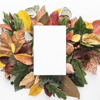 Vista superior das folhas de outono coloridas com um cartaz em branco