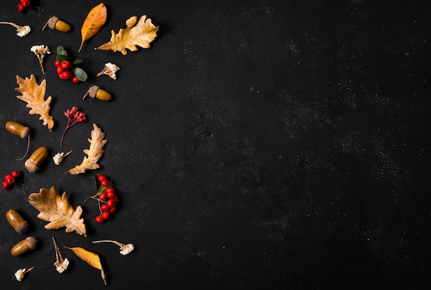Vista superior das folhas de outono com bolotas e espaço de cópia