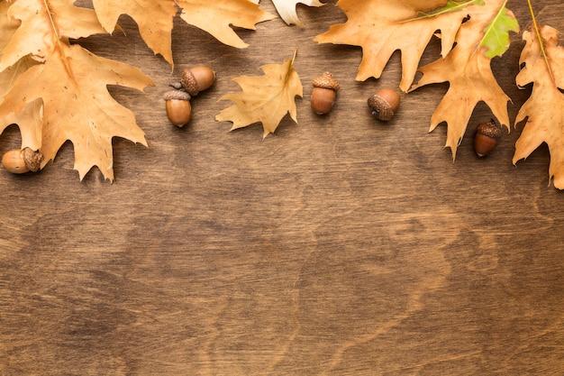 Vista superior das folhas de outono com bolotas e espaço para texto