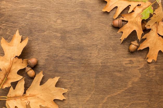 Vista superior das folhas de outono com espaço de cópia e bolotas