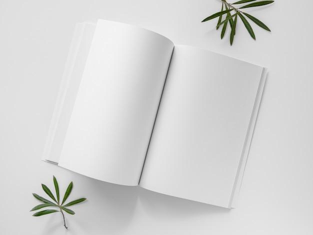 Vista superior das folhas naturais e revista branca