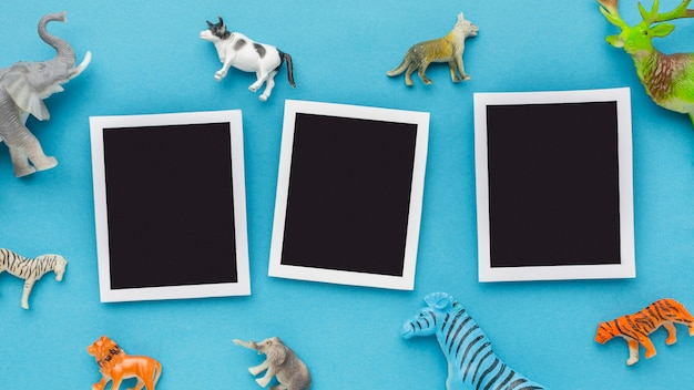 Vista superior das fotos com estatuetas de animais para o dia dos animais