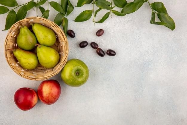 Vista superior das frutas como uma cesta de pêra com bagas de uva maçã pêssego com folhas em fundo branco com espaço de cópia