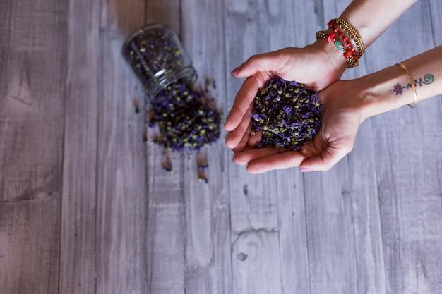 Vista superior das mãos de mulher segurando sementes ou folhas naturais roxas. conceito de estilo de vida saudável. dentro de casa. fundo cinza mesa de madeira