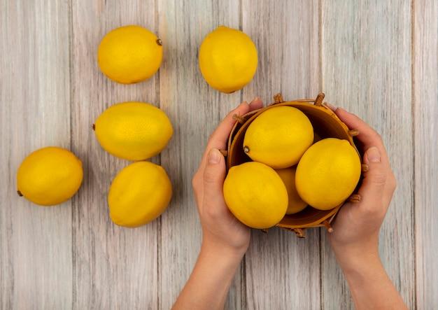 Vista superior das mãos femininas segurando um balde de limões saudáveis com limões isolados em um fundo cinza de madeira