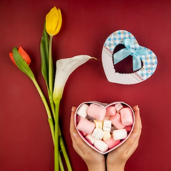Vista superior das mãos femininas, segurando uma caixa de presente em forma de coração cheia de marshmallow e tulipas de cor vermelha e amarela com lírio de calla na mesa vermelha