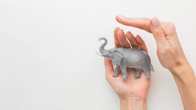 Vista superior das mãos protegendo a estatueta do elefante para o dia do animal