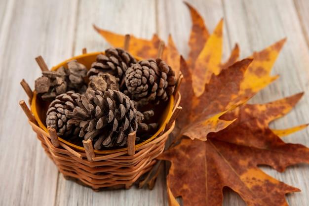 Vista superior das pinhas em um balde com folhas em uma mesa de madeira cinza