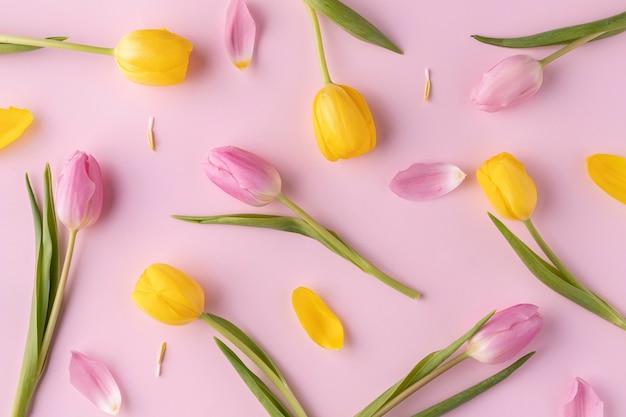 Vista superior das tulipas florescendo