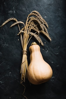 Vista superior de abóbora e grãos frescos