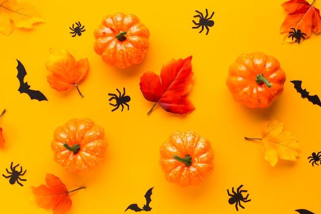 Vista superior de abóboras de halloween com folhas