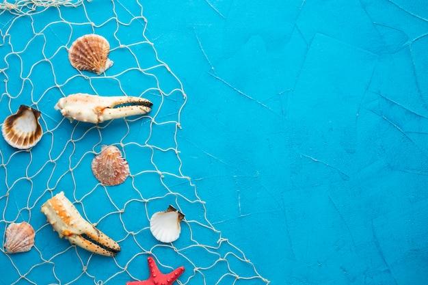 Vista superior de amêijoas e lagosta na rede de pesca