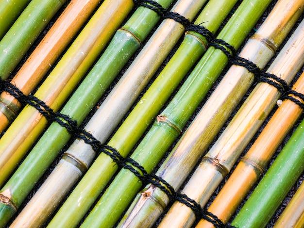 Vista superior de bambu