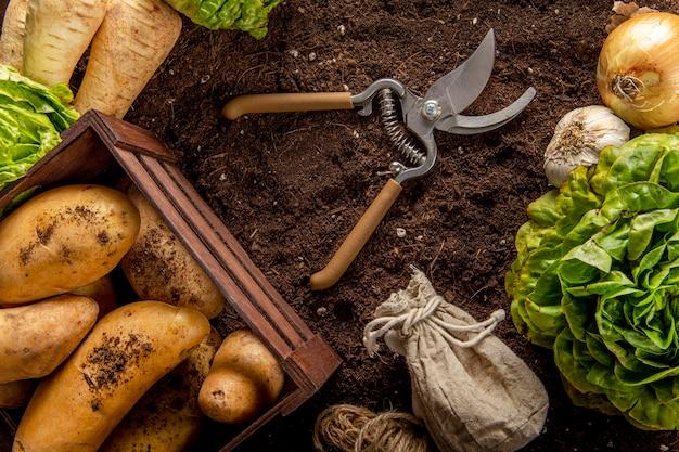 Vista superior de batatas com salada e tesoura