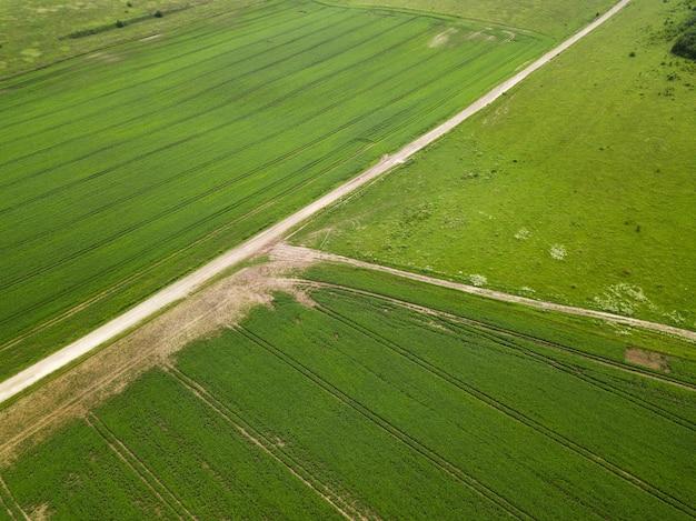 Vista superior de campos verdes de soja e estradas secundárias