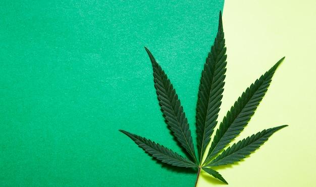 Vista superior de cannabis em fundo de papel com espaço de cópia
