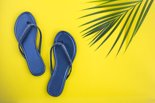 Vista superior de chinelos e folhas de palmeira