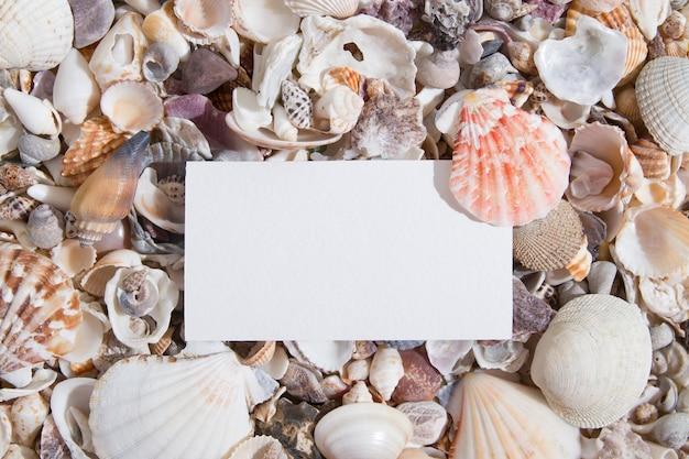 Vista superior de conchas e estrelas do mar com uma folha de papel ou cartão de visita criativo verão abstrato b.