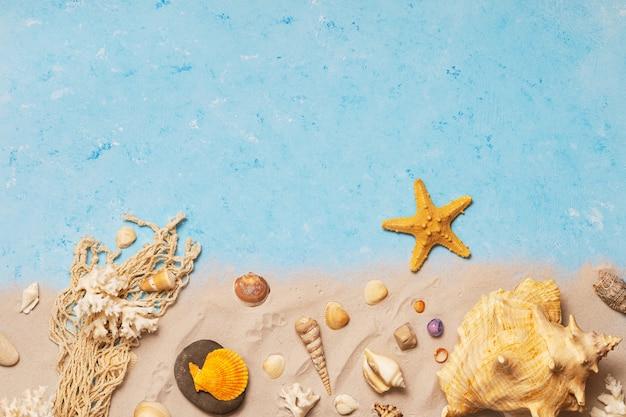 Vista superior de conchas e estrelas do mar na praia