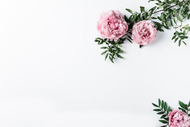 Vista superior, de, cor-de-rosa, cravos