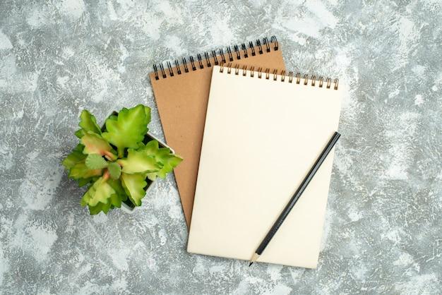 Vista superior de dois cadernos espirais kraft com caneta e vaso de flores no fundo de gelo
