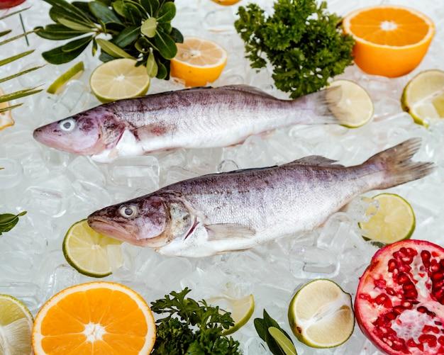 Vista superior de dois peixes crus, colocados no gelo, rodeados de fatias de frutas