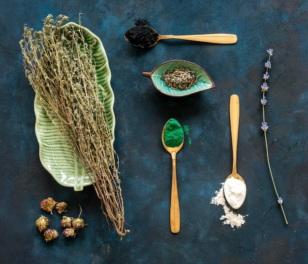Vista superior de especiarias medicinais em colheres e ervas