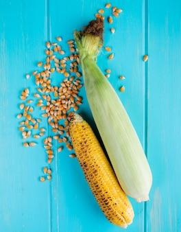 Vista superior de espigas de milho e sementes de milho na superfície azul