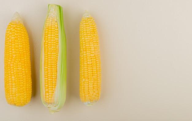 Vista superior de espigas de milho no lado esquerdo e branco com espaço de cópia