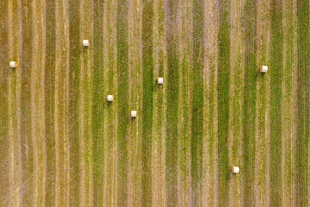 Vista superior de fardos de feno, campo agrícola após a colheita com rolos de feno