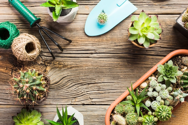 Vista superior de ferramentas de jardinagem no chão de madeira