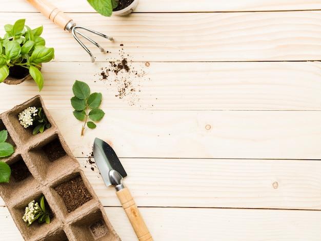 Vista superior de ferramentas e plantas de jardinagem