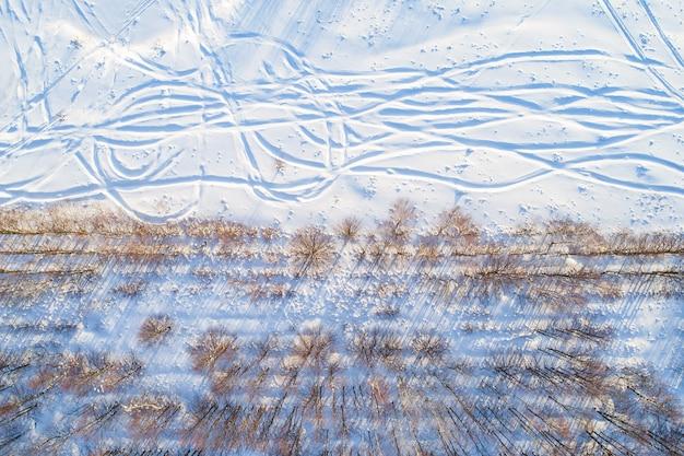 Vista superior de fileiras retas de árvores nuas com longas sombras ao longo de um campo nevado com trilhas irregulares