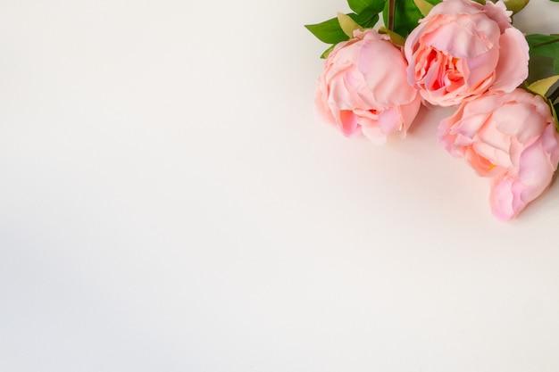 Vista superior de flores artificiais de peônias rosa sobre fundo branco em branco