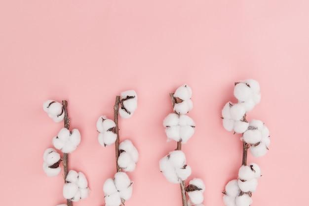 Vista superior de flores de algodão em seu galho isolado na parede rosa