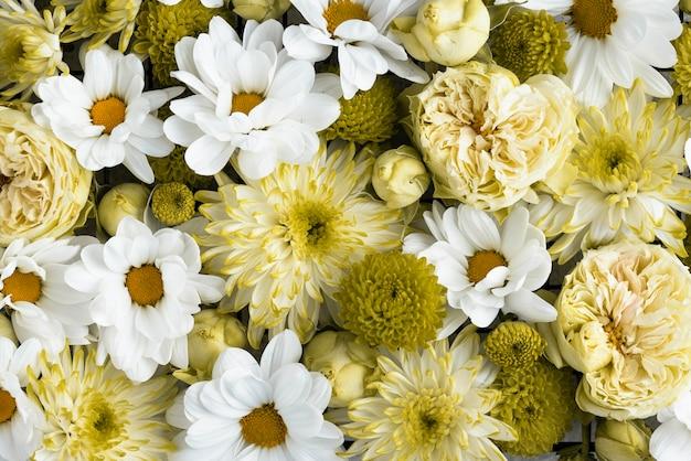 Vista superior de flores lindamente coloridas