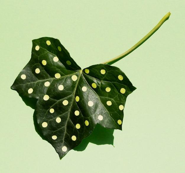 Vista superior de folha verde pontilhada de cabeça para baixo