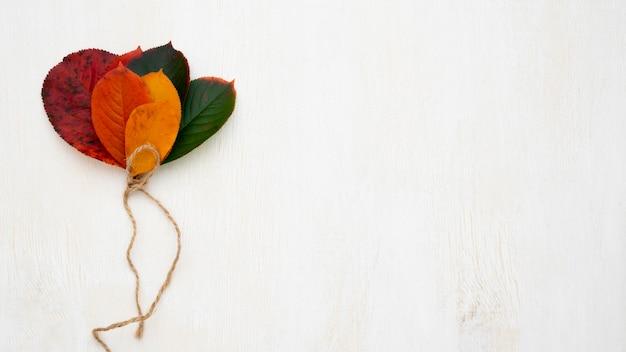 Vista superior de folhas coloridas diferentes com espaço de cópia e barbante